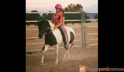 Incredabelle, Reg part-bred, been there done that taught lots of kids to ride! on HorseYard.com.au