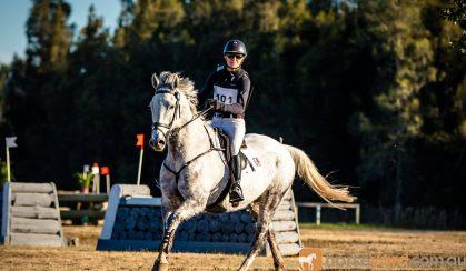 REWARDING PROJECT on HorseYard.com.au