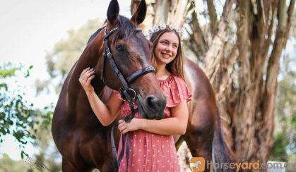 Danyiera park secret faith  on HorseYard.com.au