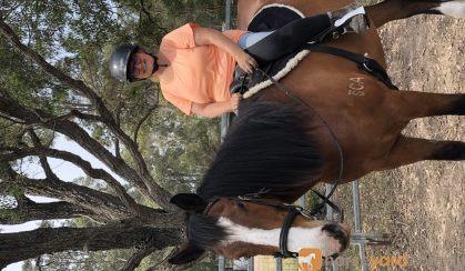 Clydie X Pleasure Mount on HorseYard.com.au
