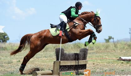 Perfect teenagers project eventer  on HorseYard.com.au