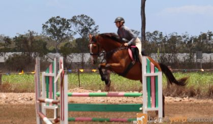 PRICE REDUCED: Everything and more!  on HorseYard.com.au