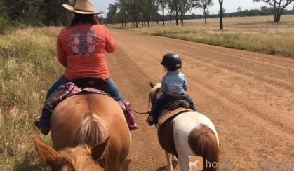 **Twinkle** on HorseYard.com.au