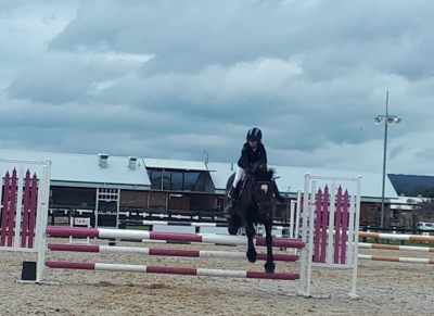 Showjumping school mistress - BERRIVALE sky blue on HorseYard.com.au
