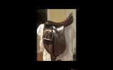 Show Saddle on HorseYard.com.au (thumbnail)