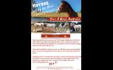 Paloosa mare on HorseYard.com.au (thumbnail)