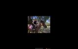 Fire- Stock horse pony  on HorseYard.com.au (thumbnail)