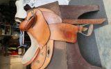 DAVE ROGAN FENDER on HorseYard.com.au (thumbnail)