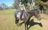 Alaska dead quiet standy mare  on HorseYard.com.au (thumbnail)