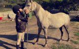Dapple grey riding pony  on HorseYard.com.au (thumbnail)