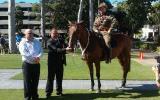 Very Quiet Tb Gelding  on HorseYard.com.au (thumbnail)