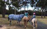 Trail Riding Appaloosa on HorseYard.com.au (thumbnail)