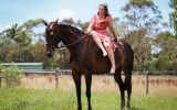 Danyiera park secret faith  on HorseYard.com.au (thumbnail)