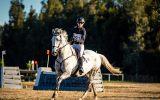 REWARDING PROJECT on HorseYard.com.au (thumbnail)
