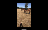 Quiet OTT Gelding  on HorseYard.com.au (thumbnail)