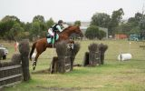 BEEN THERE DONE THAT EVENTER  on HorseYard.com.au (thumbnail)