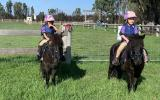 Mother's Dream Beginners Pony on HorseYard.com.au (thumbnail)
