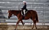 Beautiful Chestnut QH Mare on HorseYard.com.au (thumbnail)