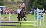 Perfect Pony Club Mount  on HorseYard.com.au (thumbnail)