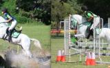 Sporting, Showjumping, XCountry Pony on HorseYard.com.au (thumbnail)