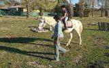 Gracious Galloway on HorseYard.com.au (thumbnail)