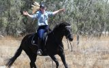 Stunning Black Andalusian x TB mare on HorseYard.com.au (thumbnail)