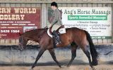 Register Quarter Horse mare by Tomcatin Around on HorseYard.com.au (thumbnail)