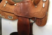 Murray Davidson  on HorseYard.com.au