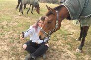 pip on HorseYard.com.au