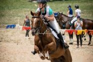 BEEN THERE DONE THAT EVENTER  on HorseYard.com.au