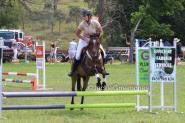 Perfect Pony Club Mount  on HorseYard.com.au