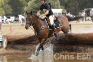 Seen it all on HorseYard.com.au