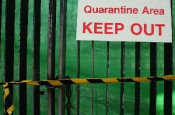 Three Properties Quarantined In Latest Hendra Incident