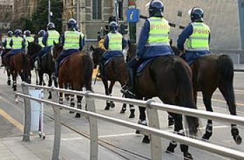 Vic Police Looking For New Horses